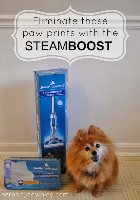Swiffer Bissell SteamBoost Giveaway at Serenity Now!