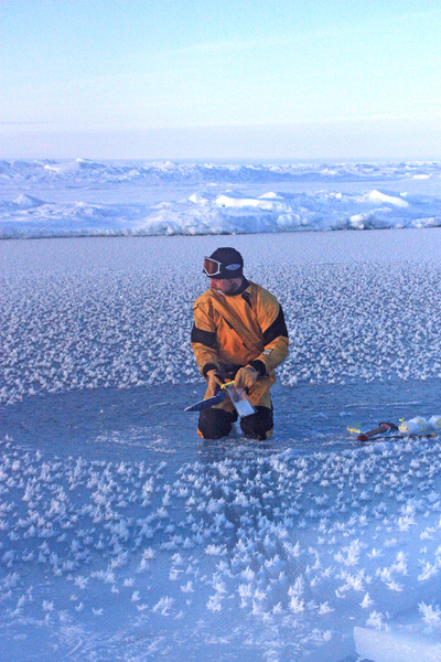 Scientist working in the Arctic Ocean