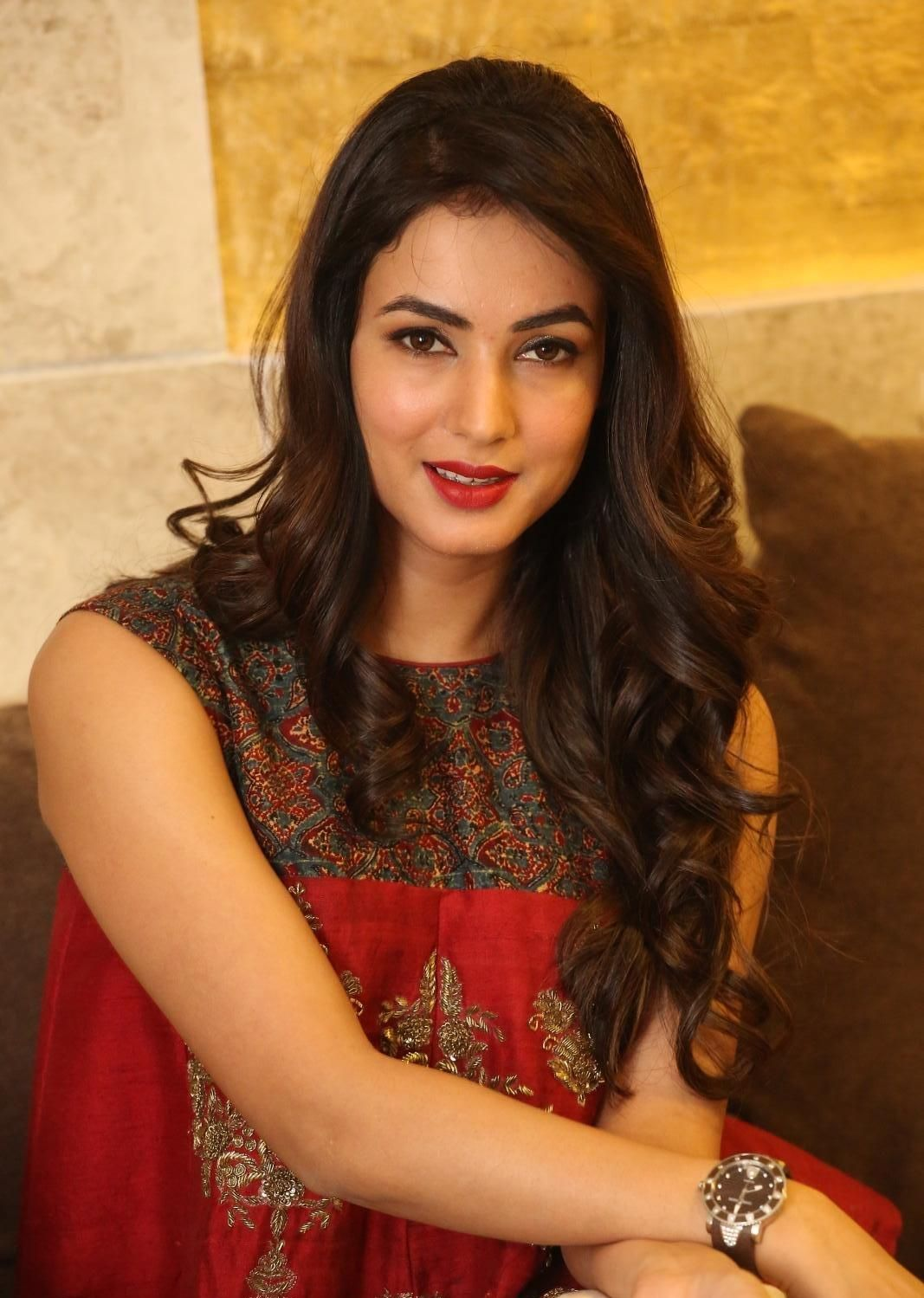 Full HQ Photos of Dictator' Actress Sonal Chauhan Hot Pics