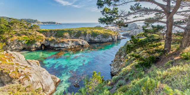 Ponto turístico Point Lobos State Natural Reserve em Carmel-by-the-Sea