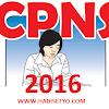 Jadwal Pendaftaran CPNS Online 2016