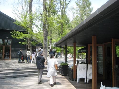 軽井沢 ハルニレテラス
