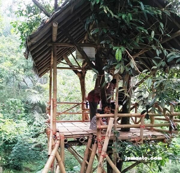 rumah pohon sedang