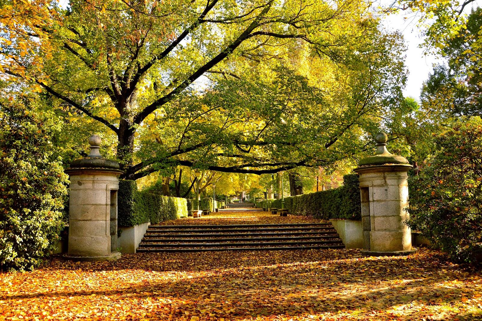 Fotografiarayodeluna viajes senderos monta a y for Jardin botanico de berlin