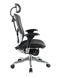 Fuzion Luxury Chair