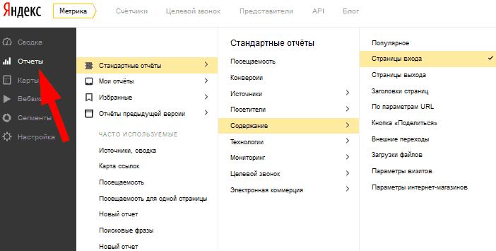 """Отчёт """"Страницы входа"""""""