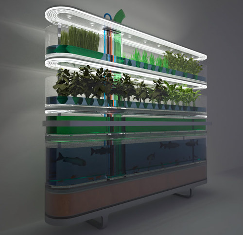 Indoor Aquaponics System Designs