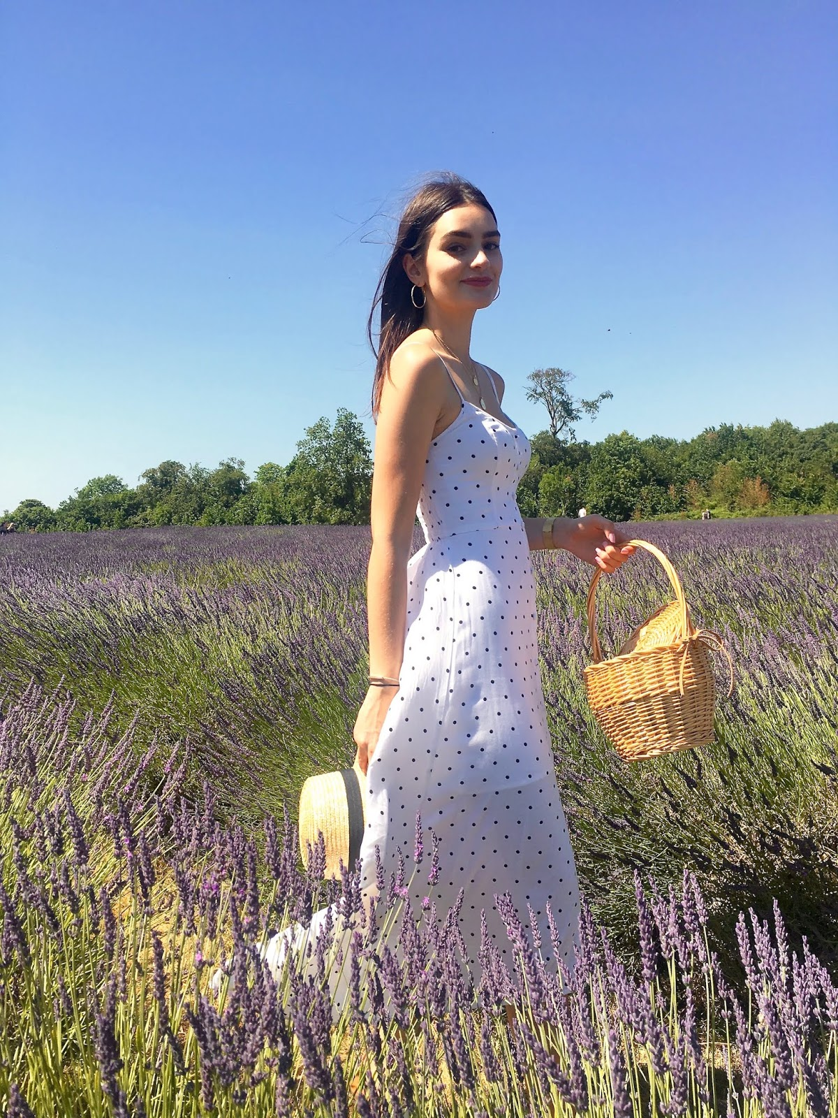peexo blog mayfield lavender fields