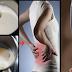 Garlic Milk Recipe: For Back Pain and Sciatica Relief