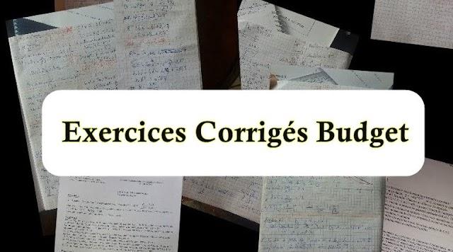 Exercices Corrigés Budget PDF
