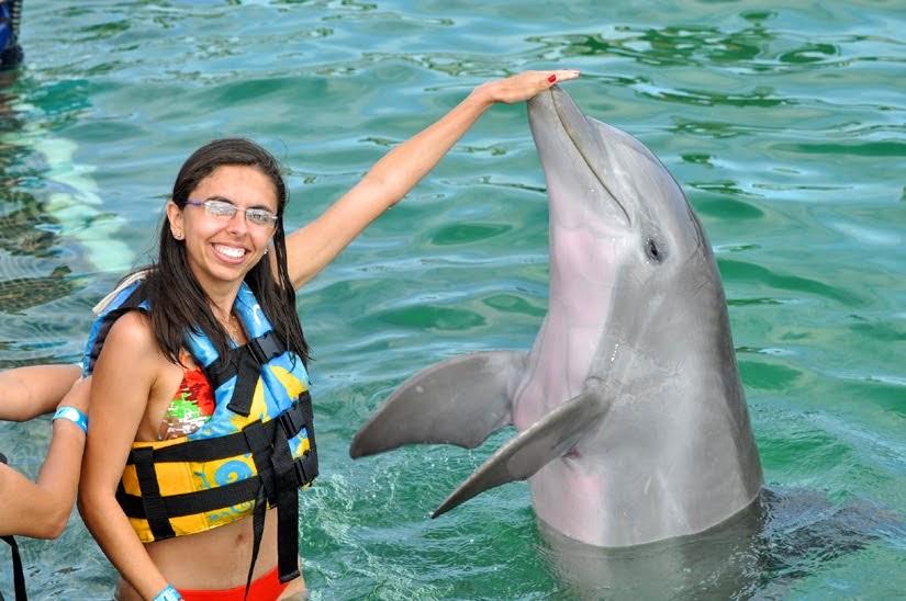 Curiosidades sobre golfinhos - Cancun - México