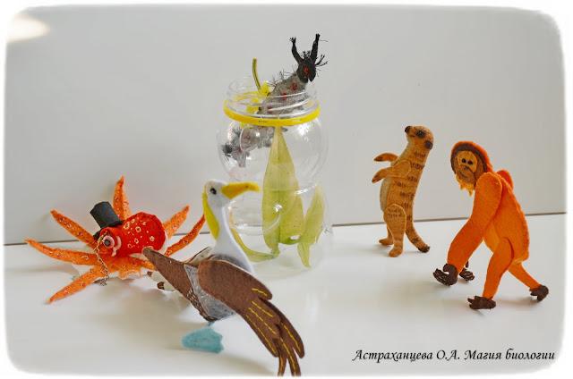 magija-biologii-palchikovyj-teatr-slon-kafrskij-voron-surikat-albatros-orangutan-antichnaja-volnjanka-volosataja-gusenica