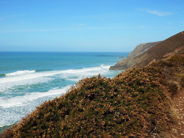 Cornwall coast path along the cliffs