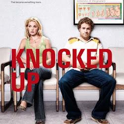 knocked up download 300mb