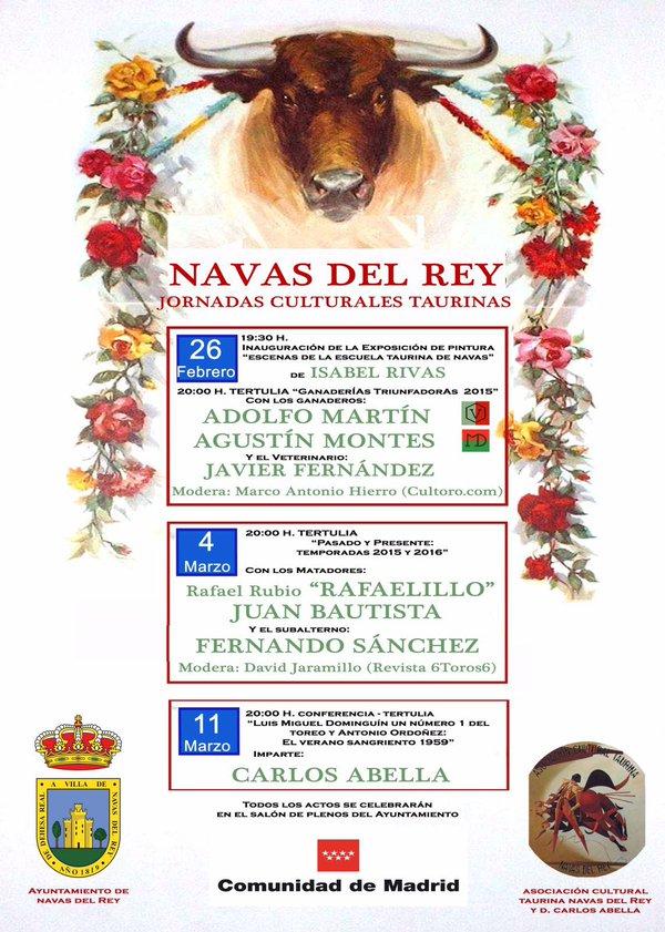 Lascosasdeltoro jornadas culturales taurinas en navas del - Pavimarsa navas del rey ...