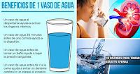 https://steviaven.blogspot.com/2018/06/10-beneficios-beber-vaso-agua-ayunas.html