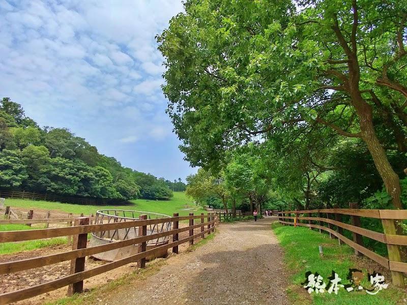 一秒到歐洲|苗栗飛牛牧場|最美牧場和大草原~野餐嬉戲觀乳牛、人工濕地護自然