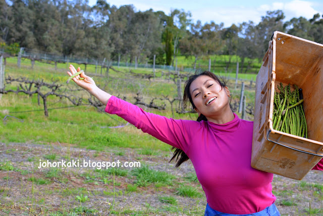 Swan-Valley-Food-Wine-Trail-Day-4-Itinerary