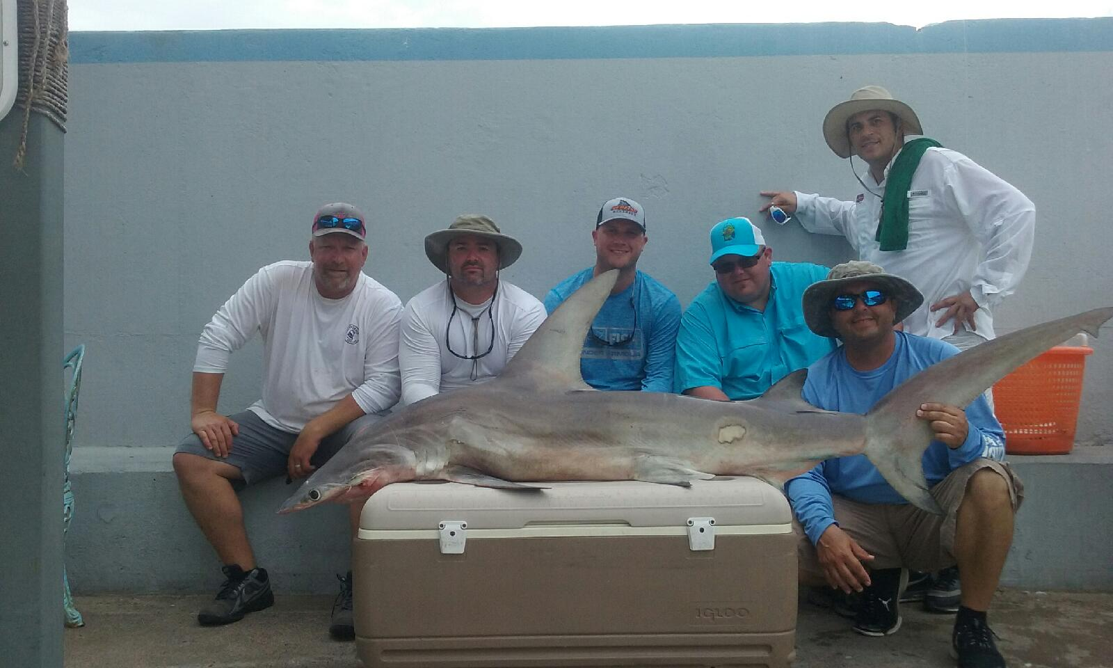 Galveston fishing report 8 12 16 galveston fishing for Galveston fishing charter
