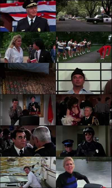 Police Academy 3: Back in Training (1986) Movie Hindi Dubbed Dual Download 300Mb