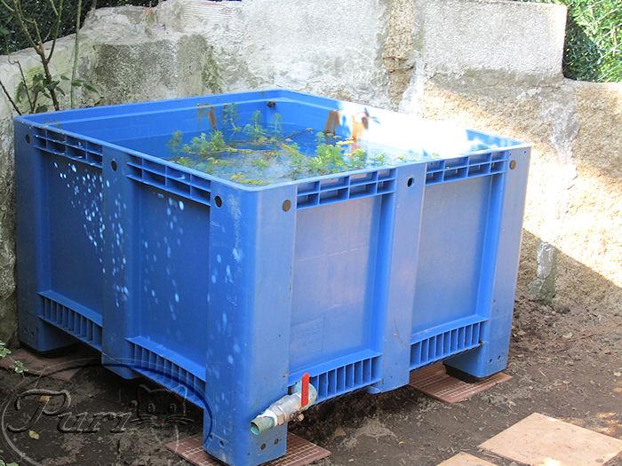 Mi jardin y mi huerto estanque de tortugas for Estanques artificiales o prefabricados