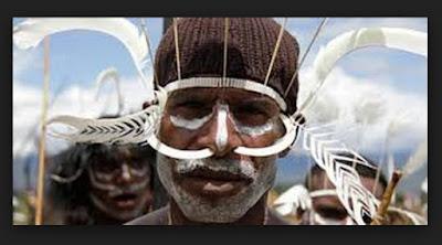 Mengenal Suku Dani dari Sejarah dan Kebudayaannya