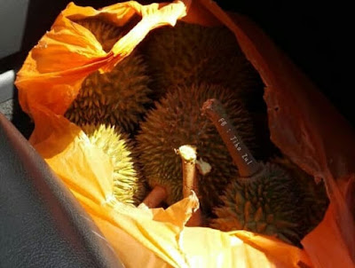 Rezeki durian hujang minggu