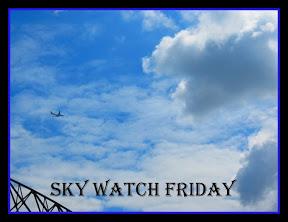 http://skyley.blogspot.se/