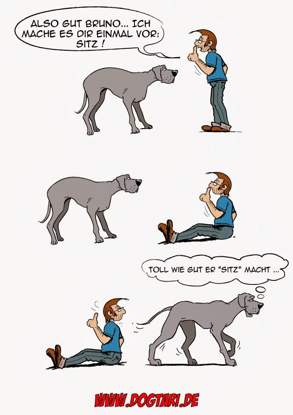 Dog Training Cartoon Pictures