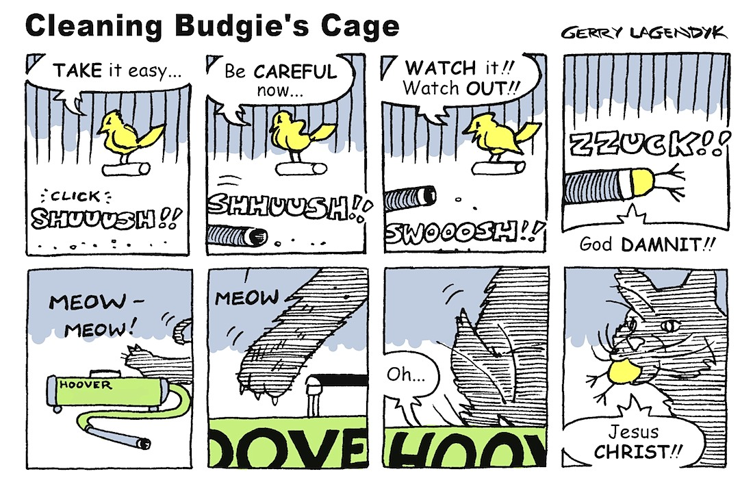 budgie cartoon by Gerry Lagendyk, Cleaning Budgie's Cage