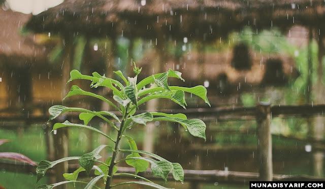 Ketika Hujan Turun, Ada yang Bersyukur Ada yang Tidak.