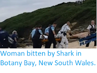 http://sciencythoughts.blogspot.co.uk/2018/02/woman-bitten-by-shark-in-botany-bay-new.html