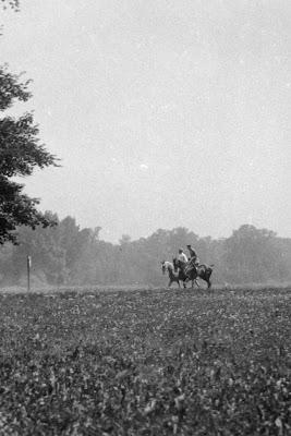 zwei Reiter auf Wiese - um 1910