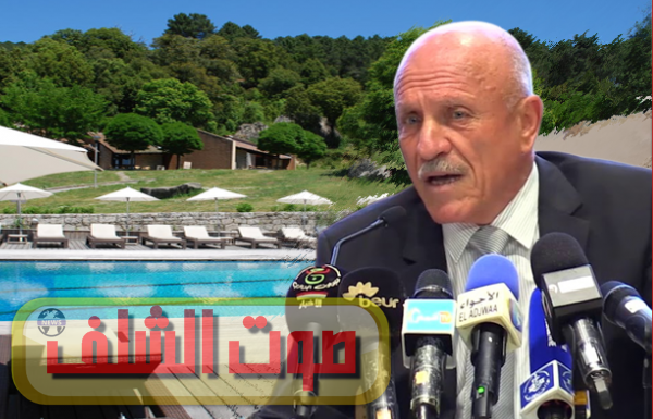 وزير سابق يكشف حقائق صادمة وبالأرقام عن فساد حميد ملزي