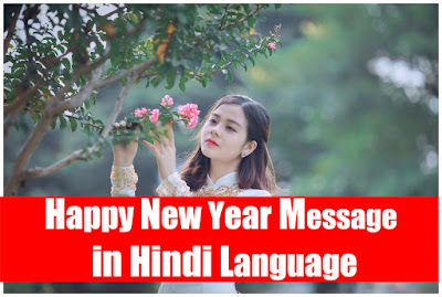 Happy new year message in the Hindi language