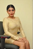 Actress Pooja Roshan Stills in Golden Short Dress at Box Movie Audio Launch  0106.JPG