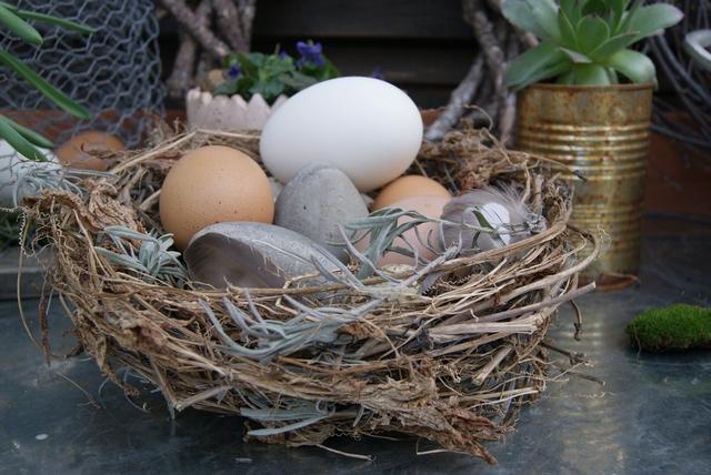 DIY Osternest aus Gartenschnittgut mit Eiern dekorieren