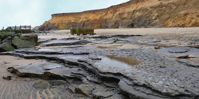Jejak manusia prasejarah tertua yang ditemukan di luar Afrika