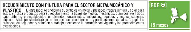RECUBRIMIENTO CON PINTURA PARA EL SECTOR METALMECANICO Y PLASTICO