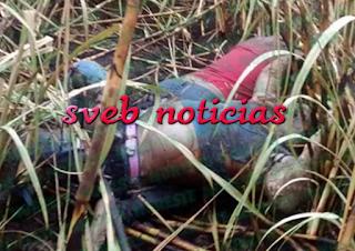 Hallan dos ejecutados en Carlos A.Carrillo Veracruz este Domingo