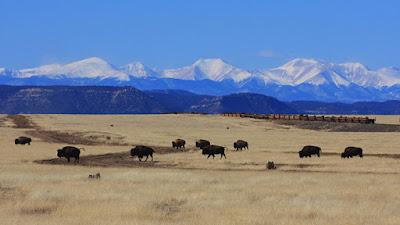 El rancho Vermejo Park.Flickr / J. N. STUART