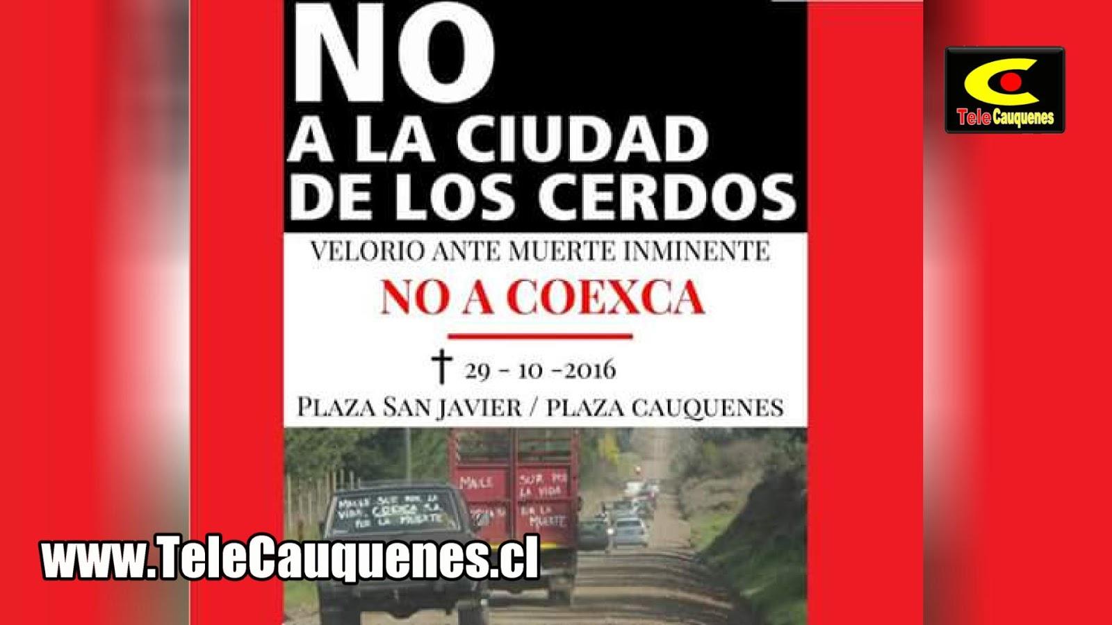 Octubre 2016 Telecauquenes Noticias De Cauquenes Y La Regi N  # Muebles Cauquenes