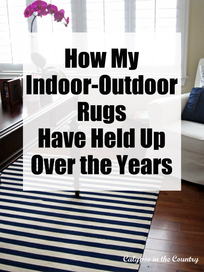 How My Indoor Outdoor Rugs Have Held Up Over the Years
