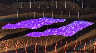 Fosil makhluk hidup yang tertimbun di dalam tanah akan berubah menjadi minyak dan gas