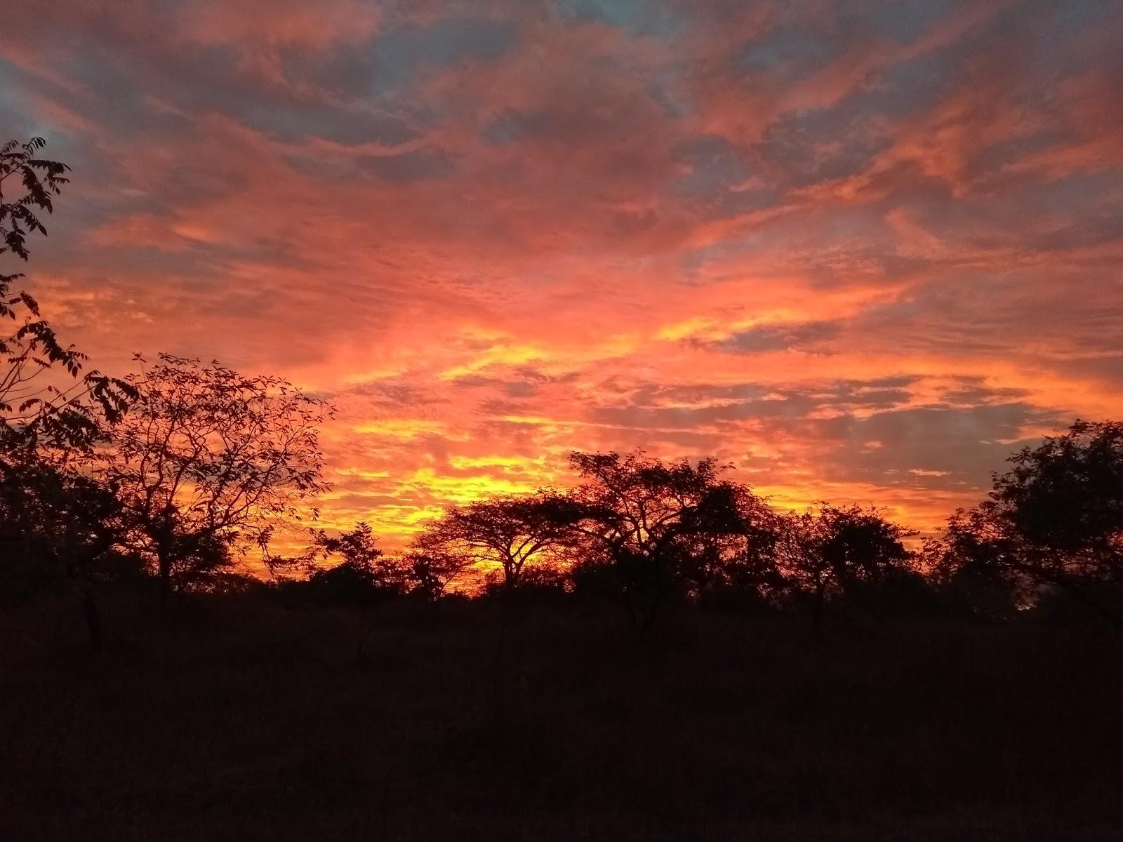 December, Pune, Sky