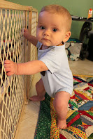 Holding Onto Baby Gate