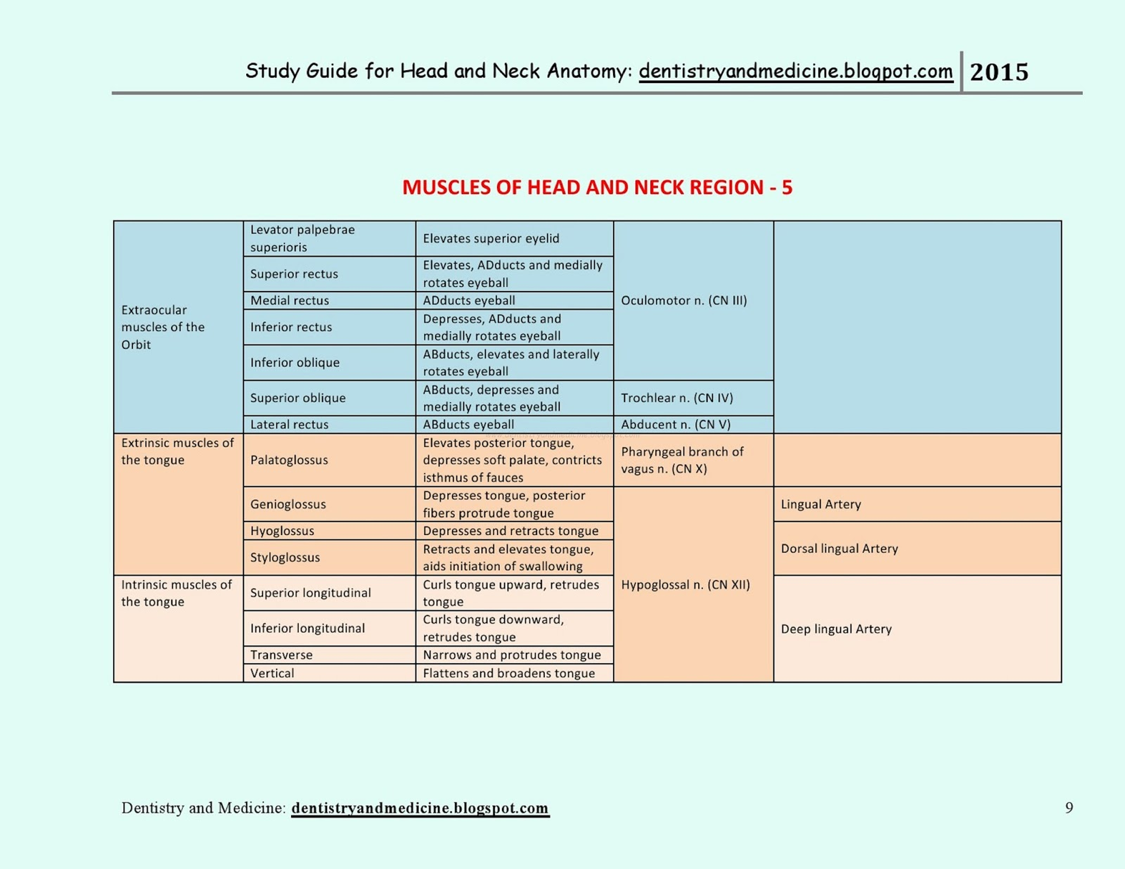 STUDY GUIDE FOR HEAD AND NECK ANATOMY - Muscles of Head and Neck ...