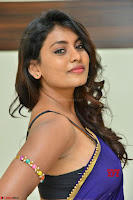 Actress Priya in Blue Saree and Sleevelss Choli at Javed Habib Salon launch ~  Exclusive Galleries 035.jpg