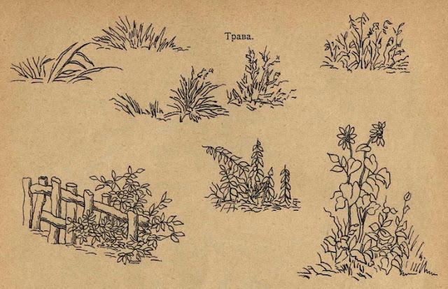 простой рисунок растений