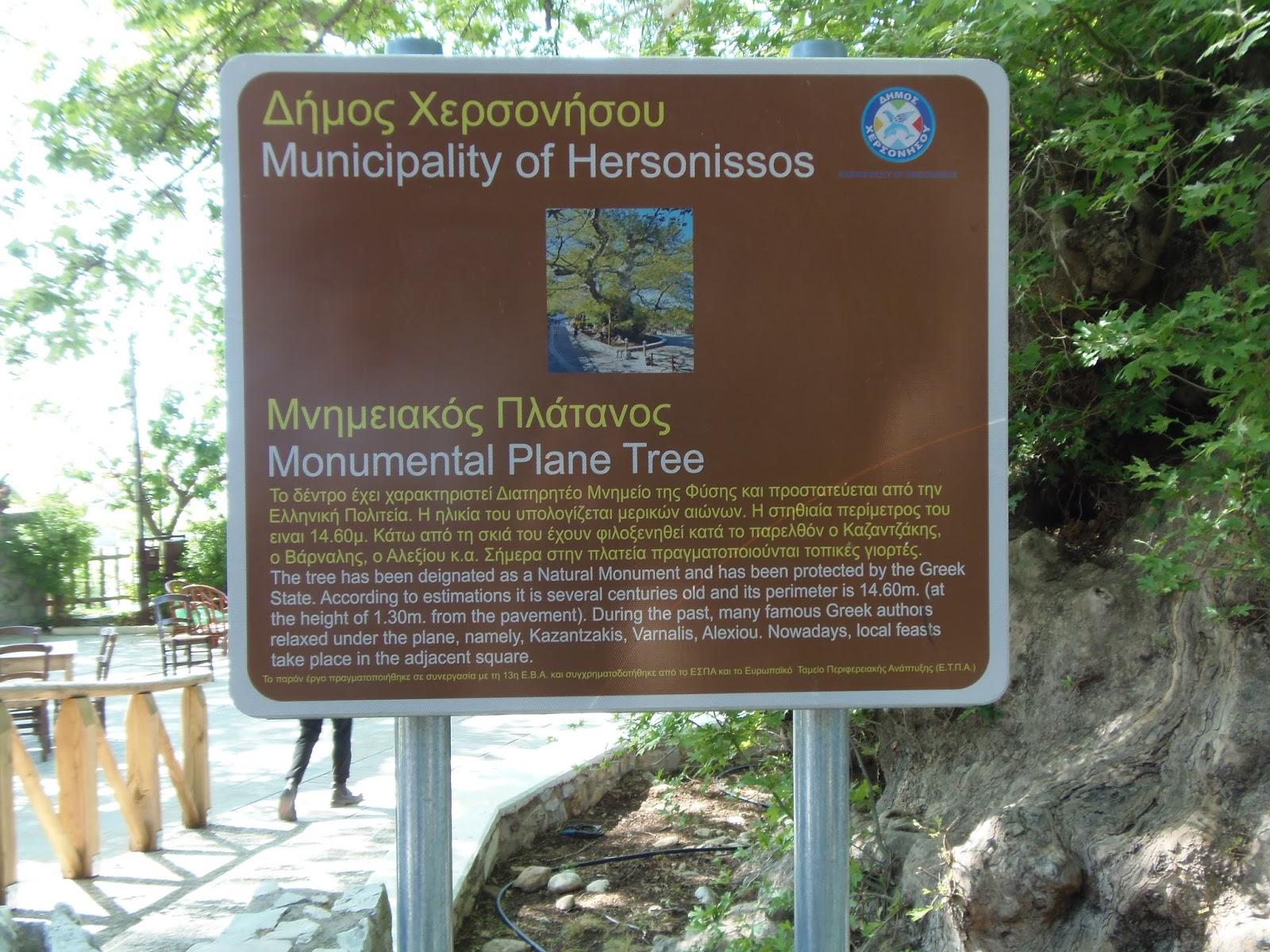 crete, sign, tree, pregnancy, greece, greek, olive tree, fig tree, travel, travel blogger